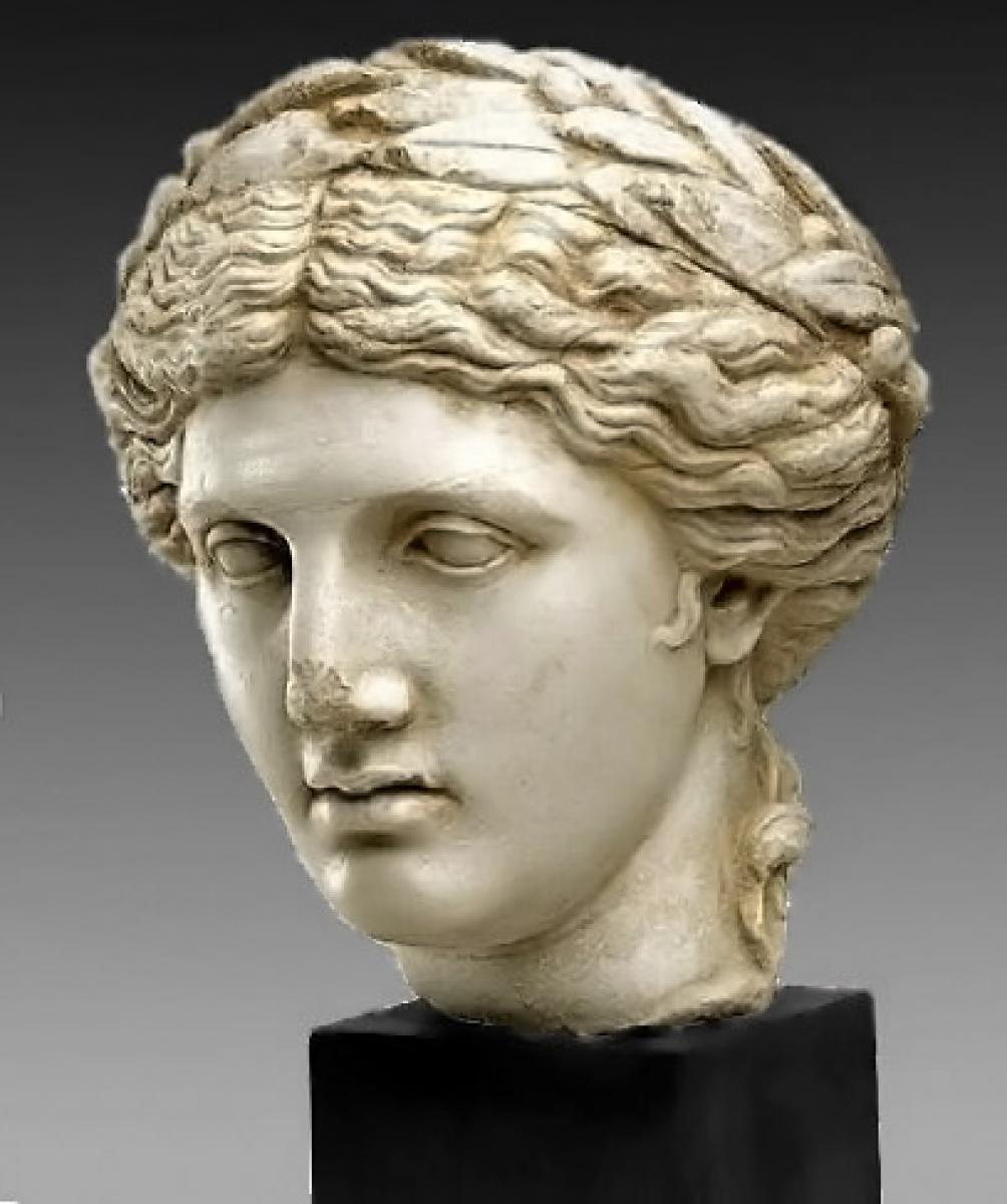 Image De Apollon busto de apollon | galerie tramway
